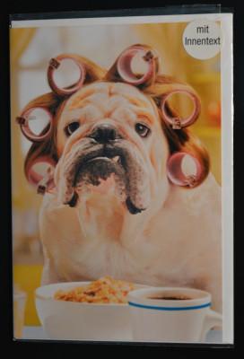 Felicitare cu plic- Caine, bulldog cu bigudiuri, dimineata - nou, Germania! #149 foto