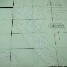 Sinaia 1942 harta color 150 x 135 cm dimensiuni ing. C. D. Orasanu - Harta Romaniei
