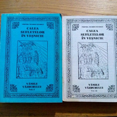 CALEA SUFLETELOR IN VESNICIE * VAMILE VAZDUHULUI - Nicodim Mandita - 2 vol. 2003 - Carti bisericesti