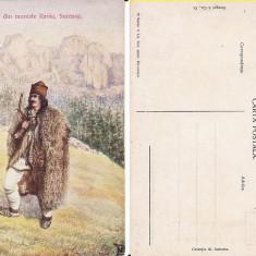 Campulung- Cioban de pe Rarau (Bucovina, Suceava)-tipuri