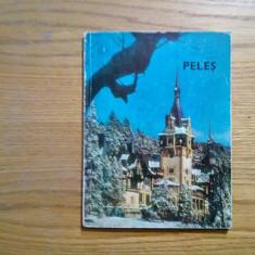 MUZEUL PELES - Sinaia, 1974 - album - Album Muzee
