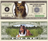 USA 1 Million Dollars UNC Caine Collie