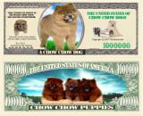 USA 1 Million Dollars UNC Caine Chow chow