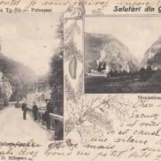 SALUTARI DIN GORJ, SOS TG.-JIU-PETROSANI(STANCA CAROL I) SI MANASTIREA POLOVRACI - Carte Postala Oltenia pana la 1904, Circulata, Printata