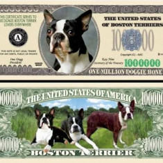 USA 1 Million Dollars UNC Caine Boston Terrier - bancnota america