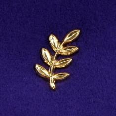 Insigna Mason - Acacia (Maestru)