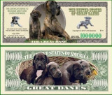 USA 1 Million Dollars UNC Dog Danez
