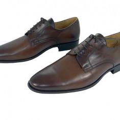 Pantofi eleganti barbati piele naturala Denis-1288 m - Pantofi barbat, Marime: 39, 40, 41, 42, 43, 44, 45, Culoare: Maro, Negru
