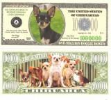 USA 1 Million Dollars Caine Chihuahua UNC