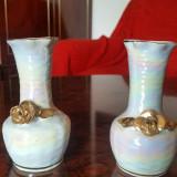 Set 2 vaze din portelan RDG