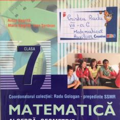 MATE 2000+ MATEMATICA ALGEBRA, GEOMETRIE CLASA 7 Partea 1 - R. Gologan, Negrila - Manual scolar paralela 45, Clasa 6, Paralela 45