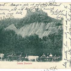 1744 - Neamt, Cetatea NEAMTULUI, ox carts - old postcard - used - 1902 - Carte Postala Moldova pana la 1904, Circulata, Printata
