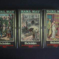 KARL MAY - WALDROSCHEN ODER DIE RACHERJAGD RUND UM DIE ERDE 3 volume {germana}, Alta editura