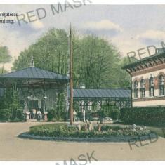 1793 - Arges, CAMPULUNG, Baile Cretulescu - old postcard - used - 1911 - Carte Postala Muntenia 1904-1918, Circulata, Printata