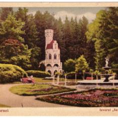 CARTI POSTALE ROMANIA-VATRA-DORNEI-IZVORUL SENTINELA-CIRCULATA-ORIGINALA - Carte Postala Muntenia dupa 1918, Printata