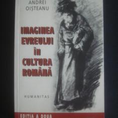 ANDREI OISTEANU - IMAGINEA EVREULUI IN CULTURA ROMANA, Humanitas