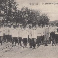 MILITARA, BUCURESTI, UN BATALION AL REGIMENTULUI 2 ARTILERIE, CIRC. SEP. 1909 - Carte postala tematica, Circulata, Printata
