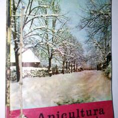 Lot 12 reviste/ revista APICULTURA IN ROMANIA - legate 1988