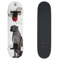 Skateboard Area Ann 31x7, 75''