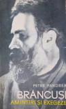 BRANCUSI AMINTIRI SI EXEGEZE - PETRE PANDREA