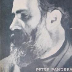BRANCUSI AMINTIRI SI EXEGEZE - PETRE PANDREA - Carte Arhitectura