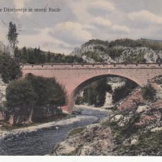 PODUL PESTE DAMBOVITA, IN MUNTII RUCAR CIRCULATA 1910 - Carte Postala Muntenia 1904-1918, Printata