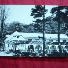 Ilustrata Baia Mare- Cabana Usturoi, circulat 1964 - Carte Postala Maramures dupa 1918, Circulata, Fotografie