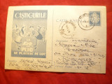 Carte Postala Loz in Plic 1960 ,desen puisor pe spate