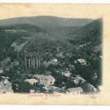 182 - Litho, Caras-Severin, ORAVITA - old postcard - used - 1902
