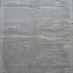 Ziarul Albina , nr. 25 , 1870 , Budapesta , in limba romana , Director V. Babes