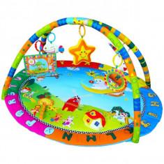 Centru De Joaca Cu Sunete Si Lumini Zoo - Jucarie zornaitoare