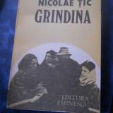 GRINDINA - NICOLAE TIC - Roman, Anul publicarii: 1987