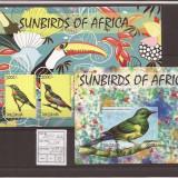 Tansania 2014 - pasari de Afrika, Natura, Africa