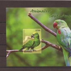 Guyana - 2014 - 3 blocke - Pasari de Guyana, Natura, America Centrala si de Sud