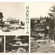 CPI (B6201) HARGHITA, MOZAIC