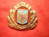 Insigna Sapca Pompieri , metal si email , dim.=7x6 cm