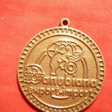 Medalie cu toarta Danubiana Export-Import, bronz, d= 3, 5 cm - Medalii Romania
