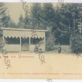 2201 - L i t h o, Bukowina, Suceava, GURA HUMORULUI - old postcard - unused