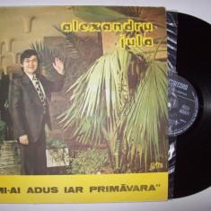 Disc vinil ALEXANDRU JULA - Mi-ai adus iar primavara (ST - EDE 02942)