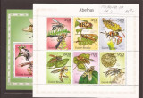 Guinea - Bissau  - Insekte
