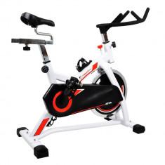 Bicicleta indoor cycling inSPORTline Jota/alb - Bicicleta fitness