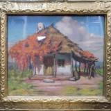 MISU TEISANU, CASA TARANEASCA - Pictor roman