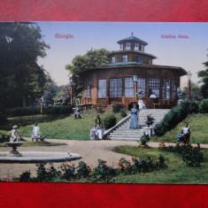 AKVDE 3 - Carte postala - Vedere - Giurgiu - Gradina Alciu - Carte Postala Banat dupa 1918, Circulata, Printata