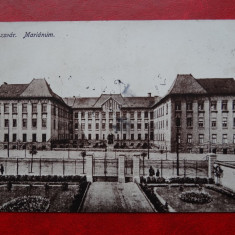 AKVDE 3 - Carte postala - Kolozsvar - Carte Postala Banat dupa 1918, Circulata, Printata