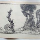 STEFAN POPESCU - XILOGRAFIE SEMNATA (1943) - Litografie