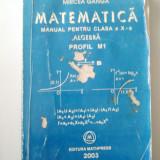 MATEMATICA - MANUAL PENTRU CLASA A X - A - ALGEBRA - MIRCEA GANGA - Manual scolar, Clasa 10
