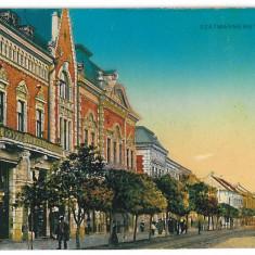 1492 - STU-MARE, street stores - old postcard - unused - Carte Postala Maramures 1904-1918, Necirculata, Printata