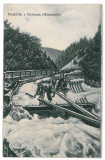 1608 - Maramures, BORSA, floating on the water - old postcard - used