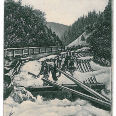 1608 - Maramures, BORSA, floating on the water - old postcard - used - Carte Postala Maramures 1904-1918, Circulata, Printata