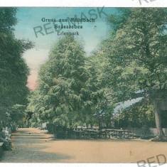 2476 - Alba, SEBES-ALBA, gradina restaurant - old postcard - used - 1914 - Carte Postala Transilvania 1904-1918, Circulata, Printata